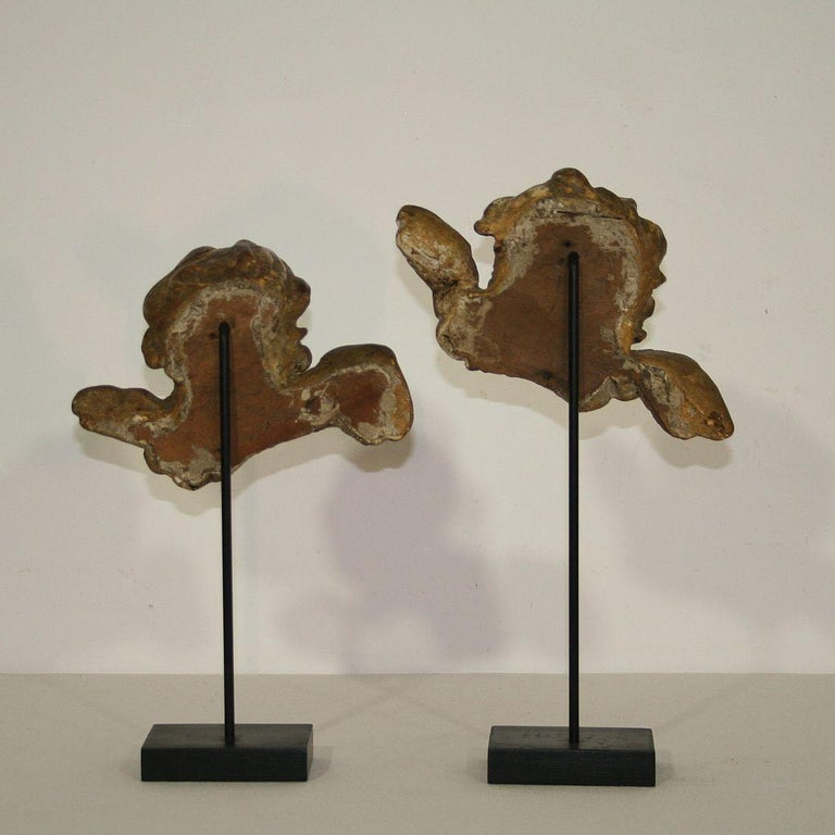 18th Century and Earlier Italian 18th Century Baroque Gilded Angel Heads For Sale