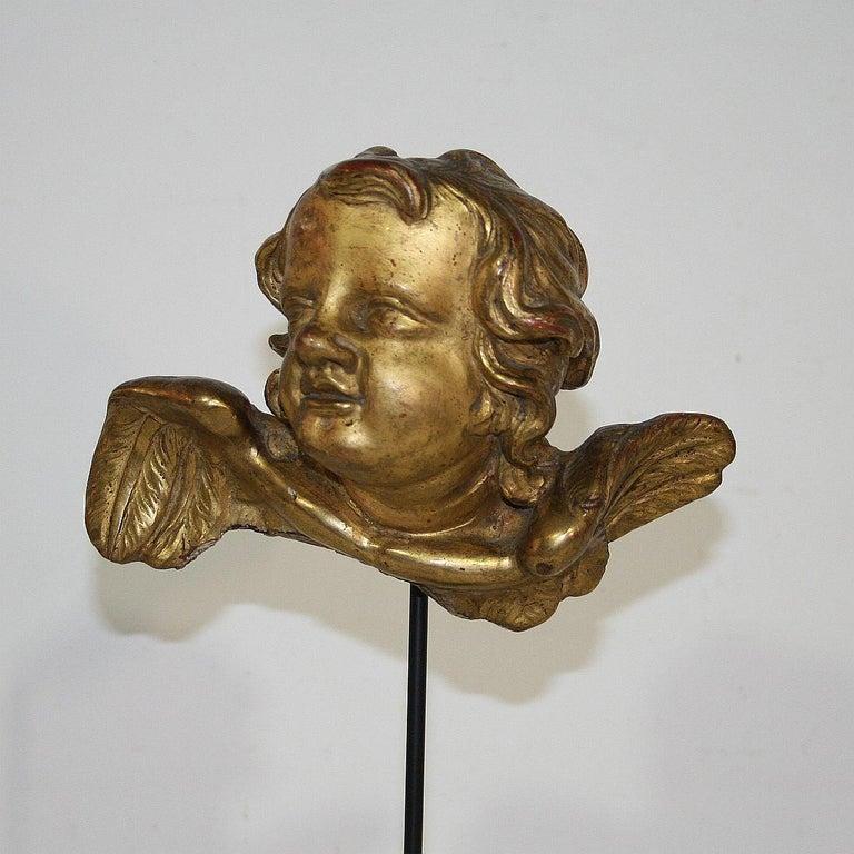 Italian 18th Century Baroque Gilded Angel Heads For Sale 4