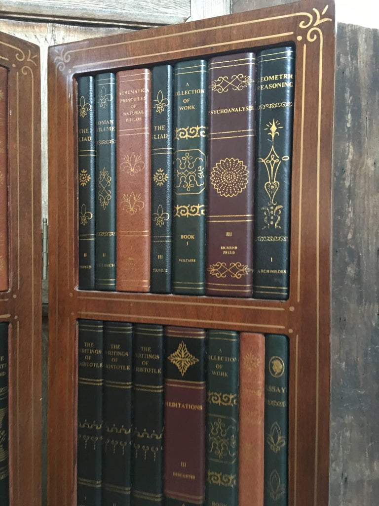 20th Century Leather Book Room Divider  For Sale 6