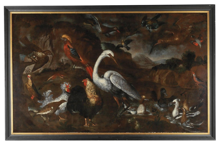 Pietro Neri Scacciati (Florence 1684–1749)  Native and exotic birds from the aviaries of Grand Duke Cosimo III of Tuscany,  oil on canvas, 144 x 232 cm, framed  A very chic and timeless large old master painting to group a room around.