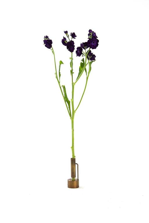 Modern Bud Vase Collection, Including Four Vases and Watering Can For Sale