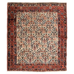 20th Century, Afshar Rug, Flowers Design over Central Field, circa 1900