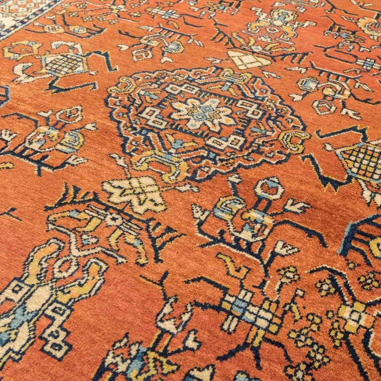 20th Century Samarkand Wool Rug, Kothan Design, circa 1900 For Sale 2
