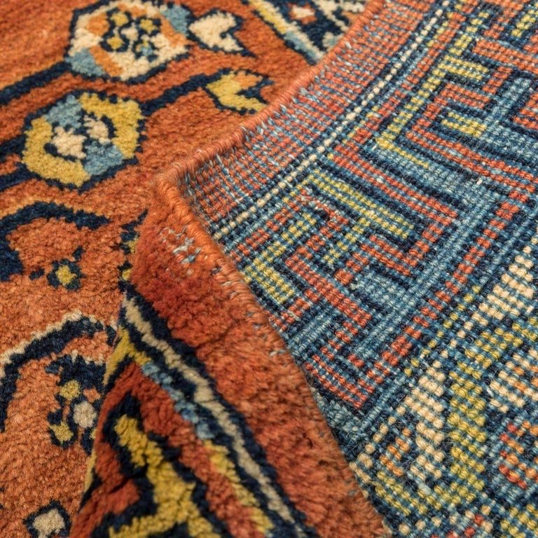 20th Century Samarkand Wool Rug, Kothan Design, circa 1900 For Sale 8