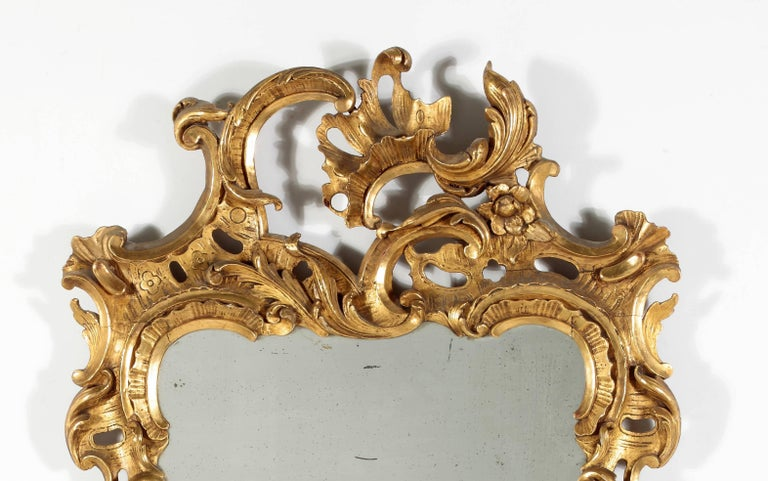 A Fine George II Giltwood Mirror 18th Century  The vertical rectangular plate within the pierce carved foliate frame  Height 52 in.   Width 30 in.  Provenance: Private Collection, New York  Mir 42