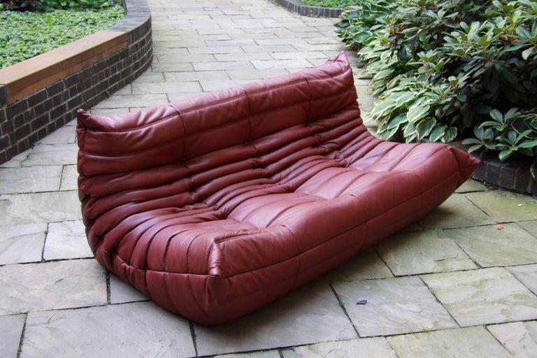 vintage burgundy leather togo sofa by michel ducaroy for ligne roset at 1stdibs. Black Bedroom Furniture Sets. Home Design Ideas