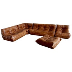 Tobacco Leather Togo Living Room Set by Michel Ducaroy for Ligne Roset