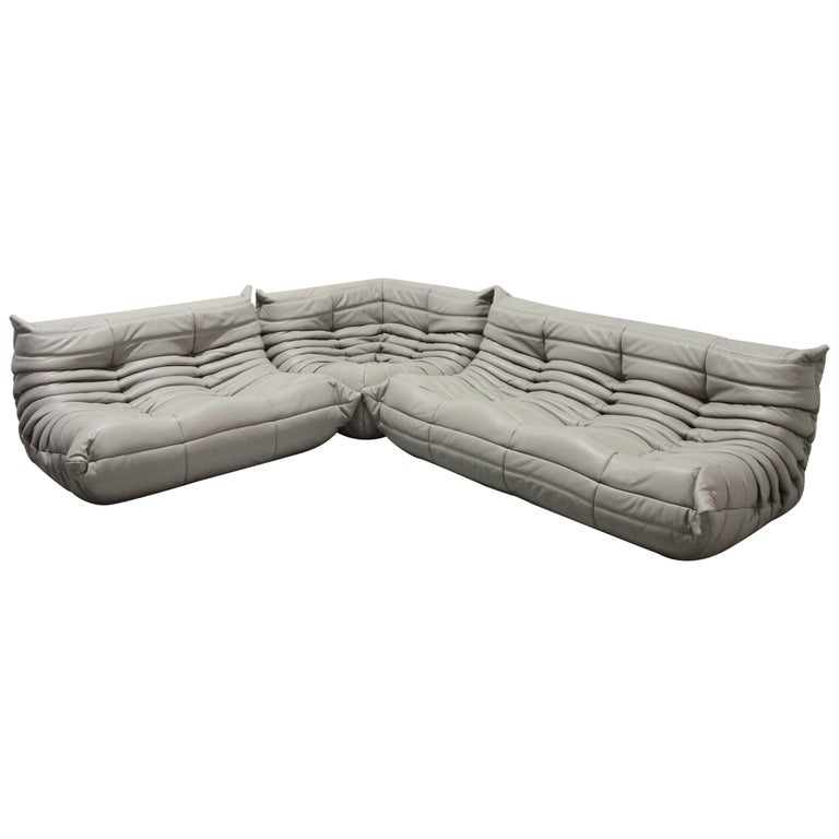 Light Grey Leather Togo Living Room Set by Michel Ducaroy for Ligne Roset, 1970s