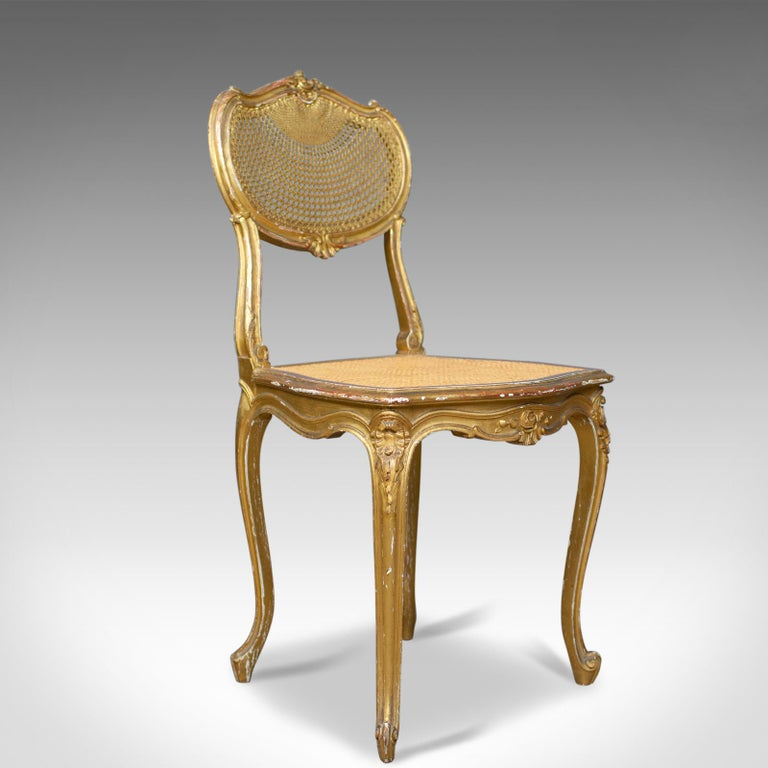 This is a pair of antique Louis XV revival salon chairs. Two French,  giltwood - Antique Louis XV Revival Salon Chairs, French, Giltwood, Cane, Circa