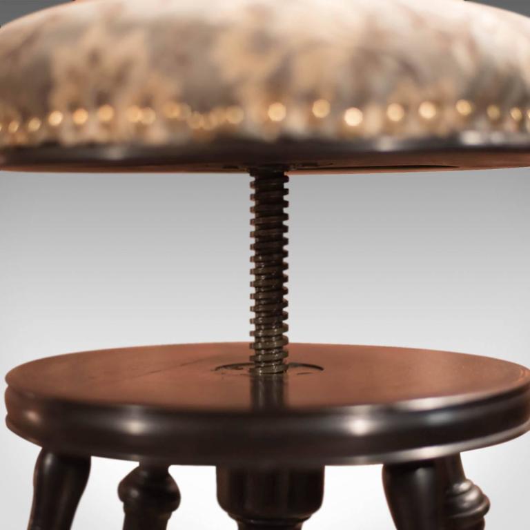 19th Century Antique Piano Stool Aesthetic Period Circa