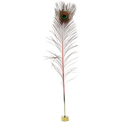 *FLASH Sale! Peacock Pussy Pleaser Desk Accessory by Christopher Kreiling