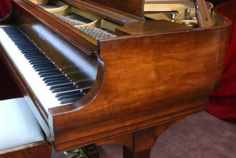 Steinway Dark Walnut Baby Grand Refinished/Refurbished Piano, 2017 8