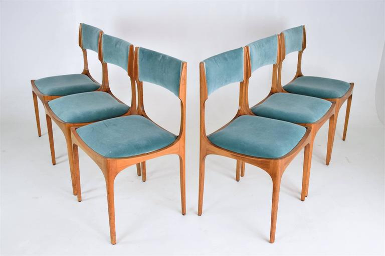 Varnished Mid-Century Giuseppe Gibelli Dining Chairs, Set of Six