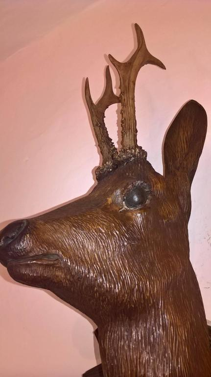 Oak 19th Century Austrian Black Forest Hunting Trophy with Deer Head  For Sale