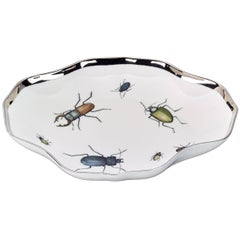 Country Style Modern Hand-Painted Porcelain Dish with Beetles