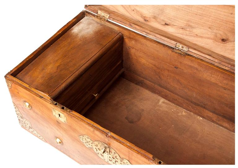 19th Century Camphor Wood Chest 6