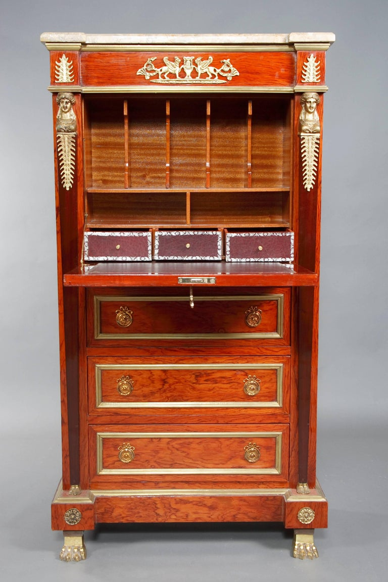 20th Century Library Secretaire in the Empire Style Mahogany Veneer In Good Condition For Sale In Berlin, DE