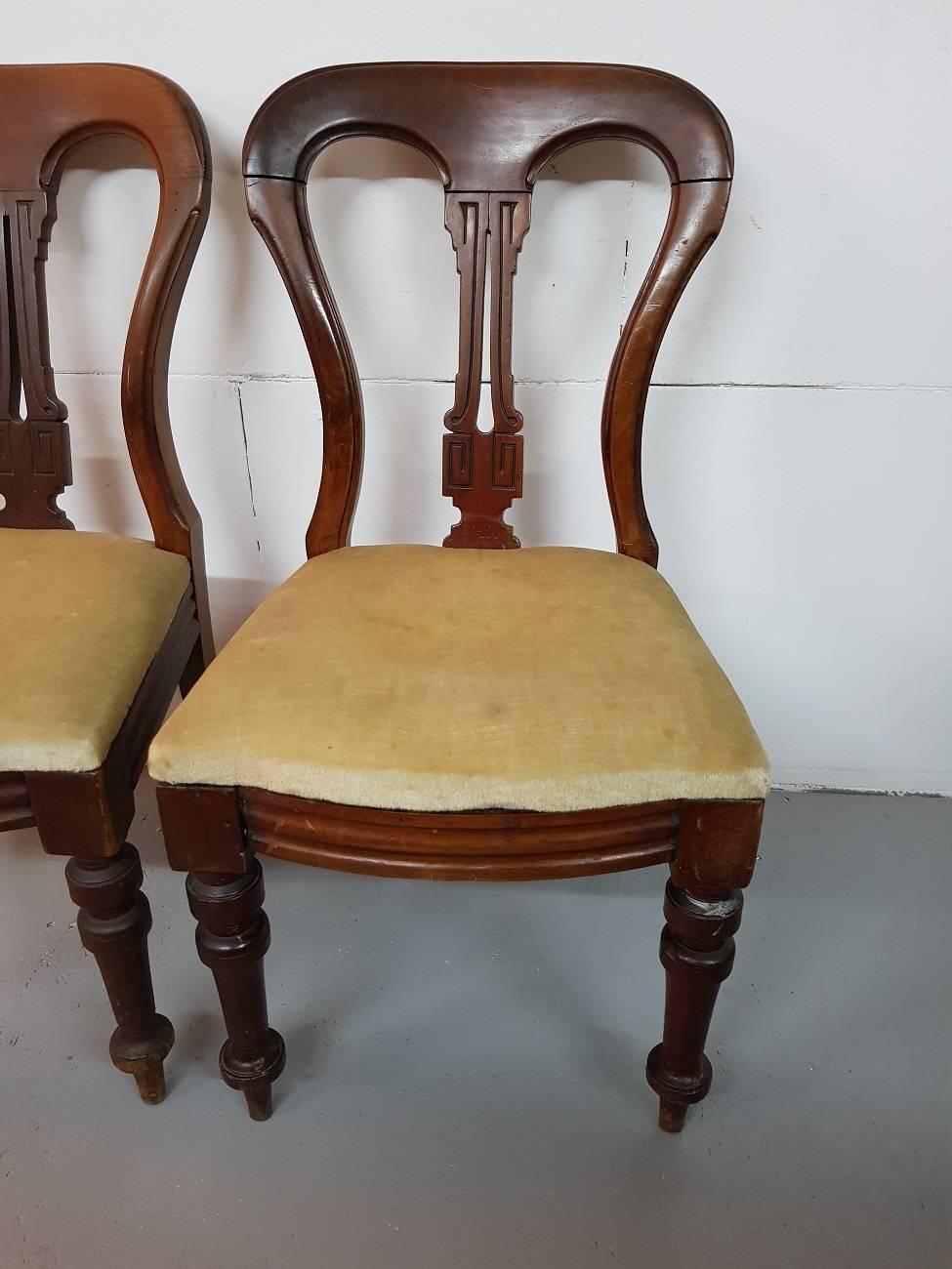 Late 19th Century English Mahogany Victorian Balloon Back Chairs At 1stdibs