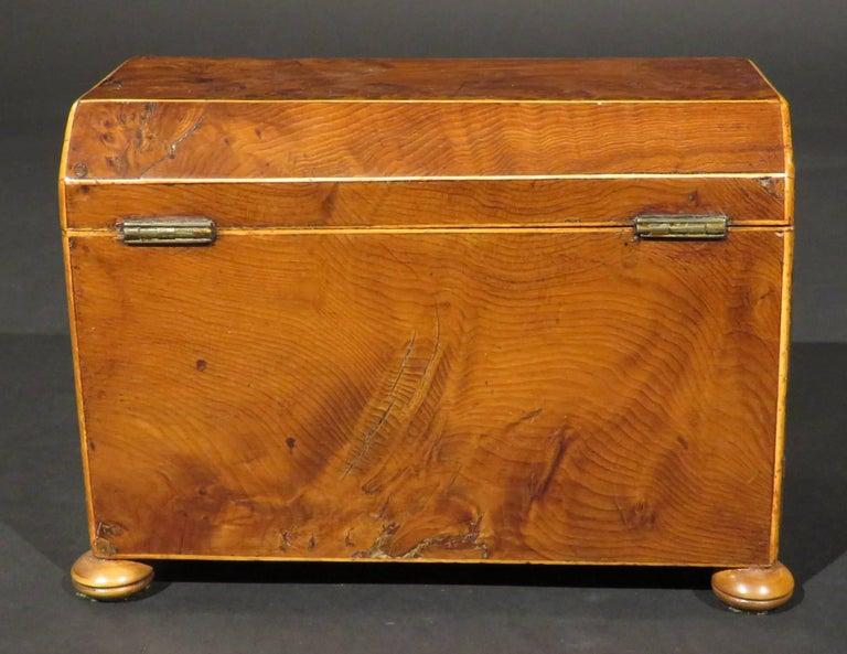 English Fine Early 19th Century Georgian Burr Yew Wood Tea Caddy, England Circa 1800 For Sale
