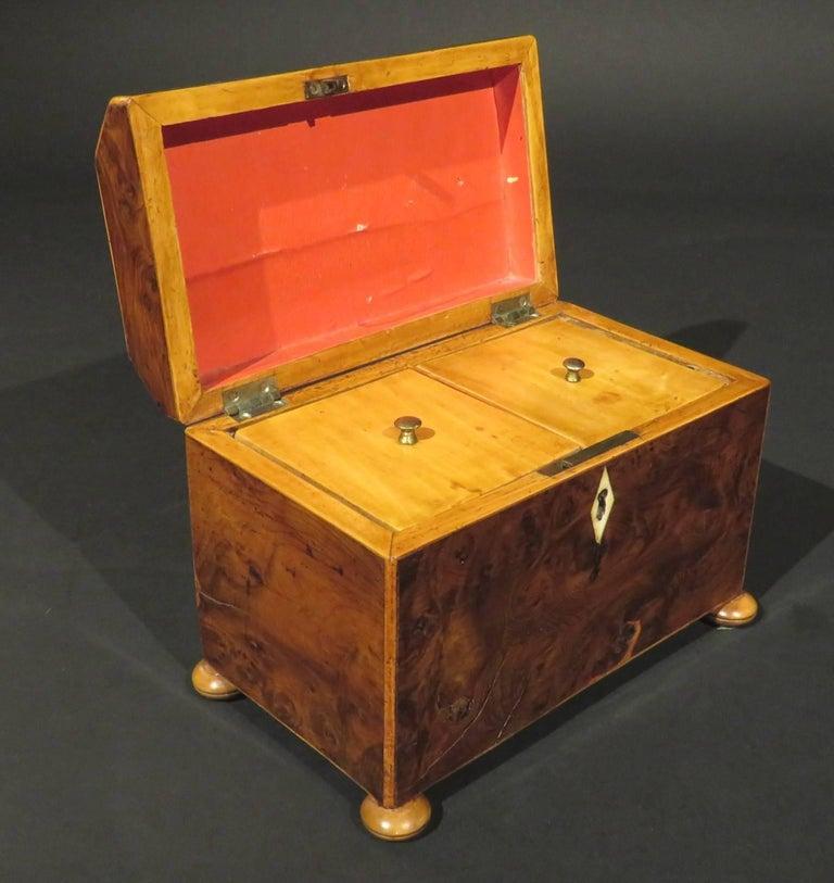 Fine Early 19th Century Georgian Burr Yew Wood Tea Caddy, England Circa 1800 In Good Condition For Sale In Ottawa, Ontario