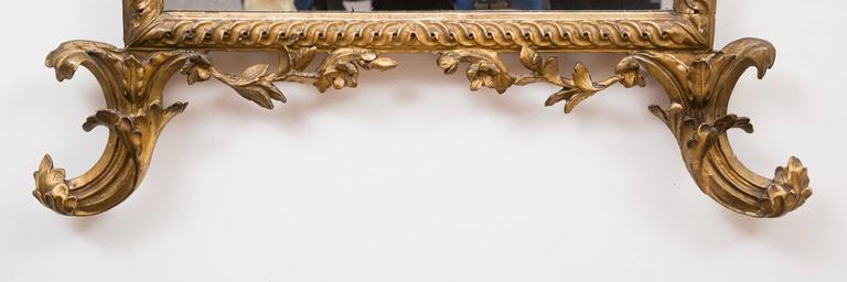 Important Italian neoclassical giltwood pier mirror with plumed crest above carved arabesques of acanthus leaves cascading down to the sides, standing on C-scroll acanthus leaf feet.