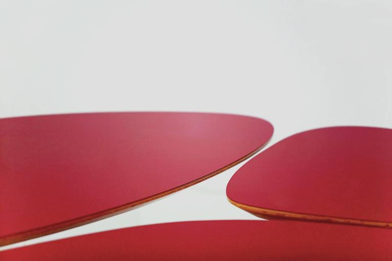Janette Laverriere 'Nenuphar' Contemporary Red Coffee Table 3