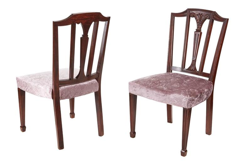 Pair of mahogany Hepplewhite side chairs, with shaped top rail, carved and reeded centre splat, newly re-upholstered seats, standing on reeded tapered front legs outswept back legs Lovely color and condition.