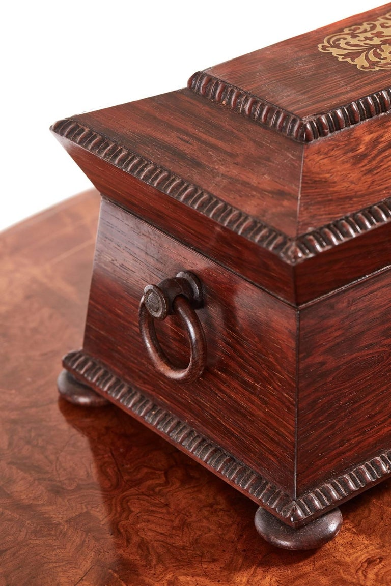 Fine Regency Brass Inlaid Rosewood Tea Caddy In Excellent Condition For Sale In Stutton, GB