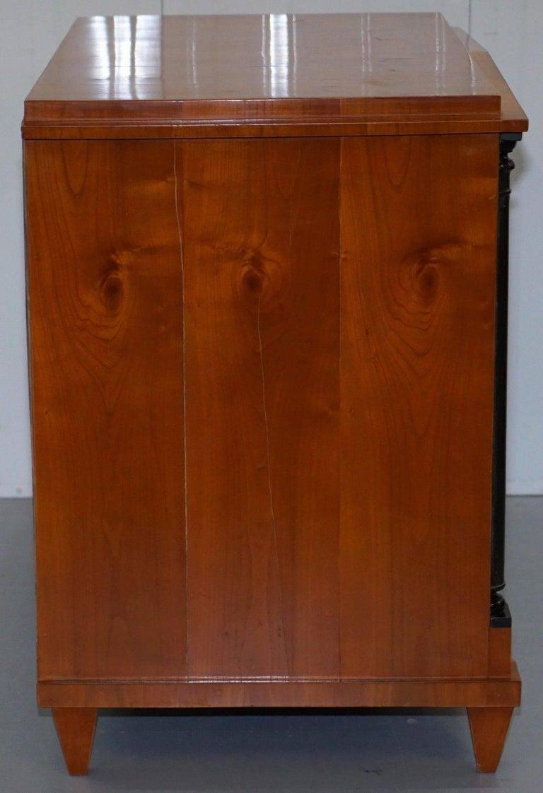 Swedish Biedermeier Cherry Wood Chest of Drawers, Ebonized Pillars, circa 1850 For Sale 3