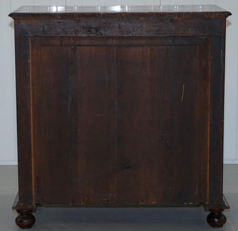 Stunning Biedermeier Flamed Mahogany Small Chest of Drawers Rare Find circa 1820 For Sale 9
