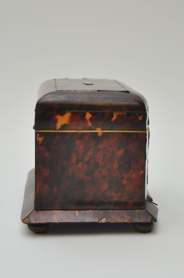 Tortoiseshell Tea Caddy 3