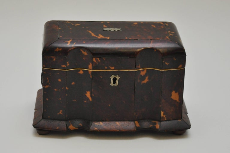 Tortoiseshell Tea Caddy 4