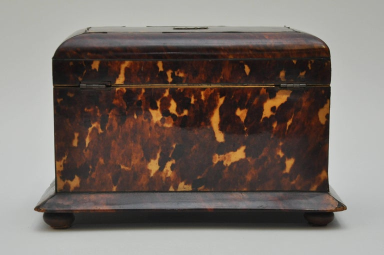 Tortoiseshell Tea Caddy 5