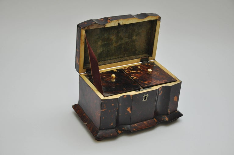 Tortoiseshell Tea Caddy 7