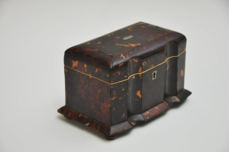 Tortoiseshell Tea Caddy 8