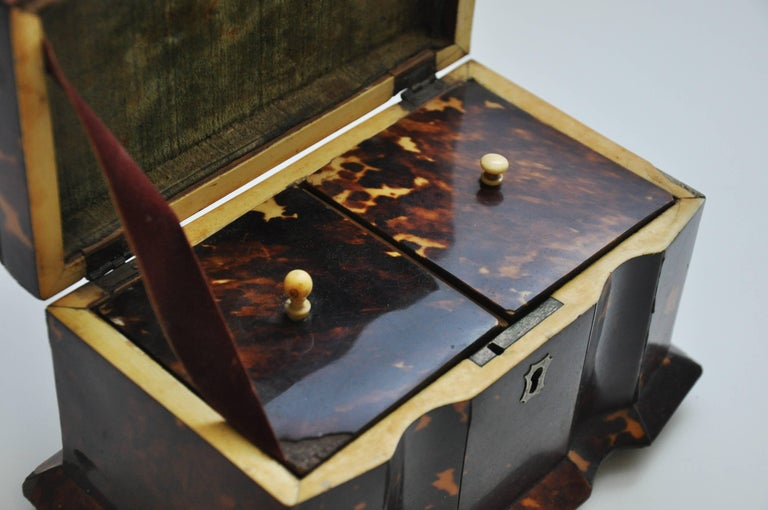 Tortoiseshell Tea Caddy 10
