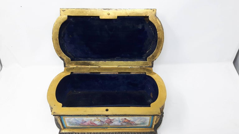 French 19th Century Sevres Casket For Sale