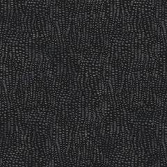 Anemone Designer Wallpaper in Color Assam 'Multi-Color Grey on Black'
