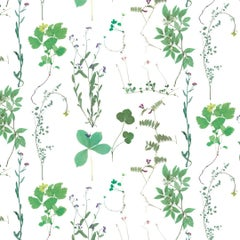Herbario Designer Wallpaper in Sprout 'Multi-Color Greens on White'