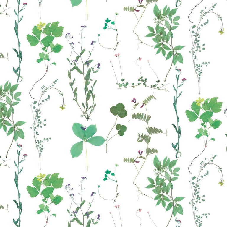 Herbario Designer Wallpaper in Sprout 'Multi-Color Greens on White' For Sale
