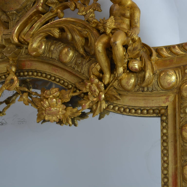 Large French 19th Century Ornate Giltwood Carved Mirror Louis XV Style Mirror For Sale 4