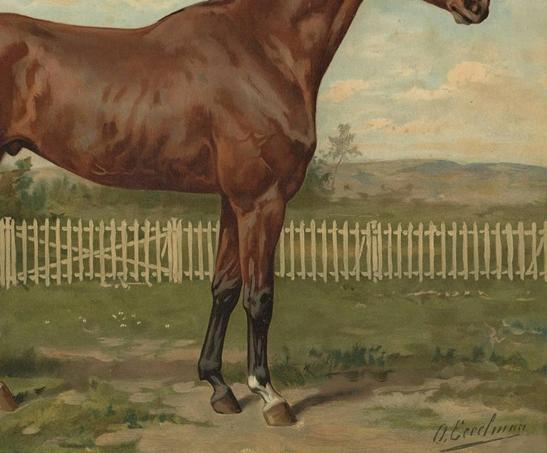 19th Century Antique Horse Print of an English Thoroughbred by O. Eerelman, 1898 For Sale