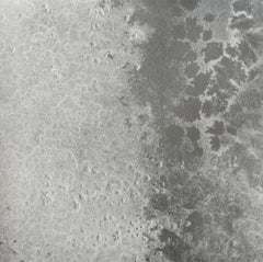 Oceania Fathom Wallpaper or Wall Mural in Silver Metallic Grayscale