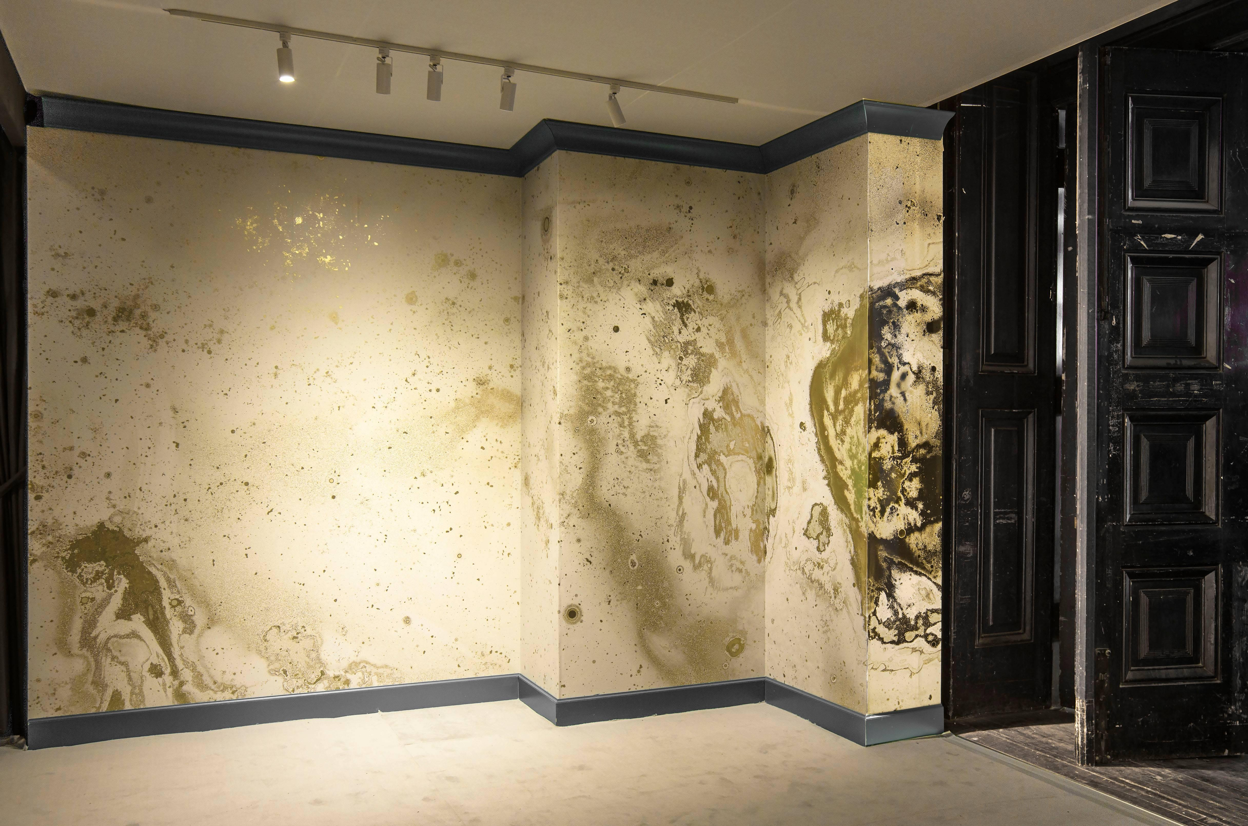 Inverted Spaces Corona Wallpaper or Wall Mural in Gold Metallic For ...