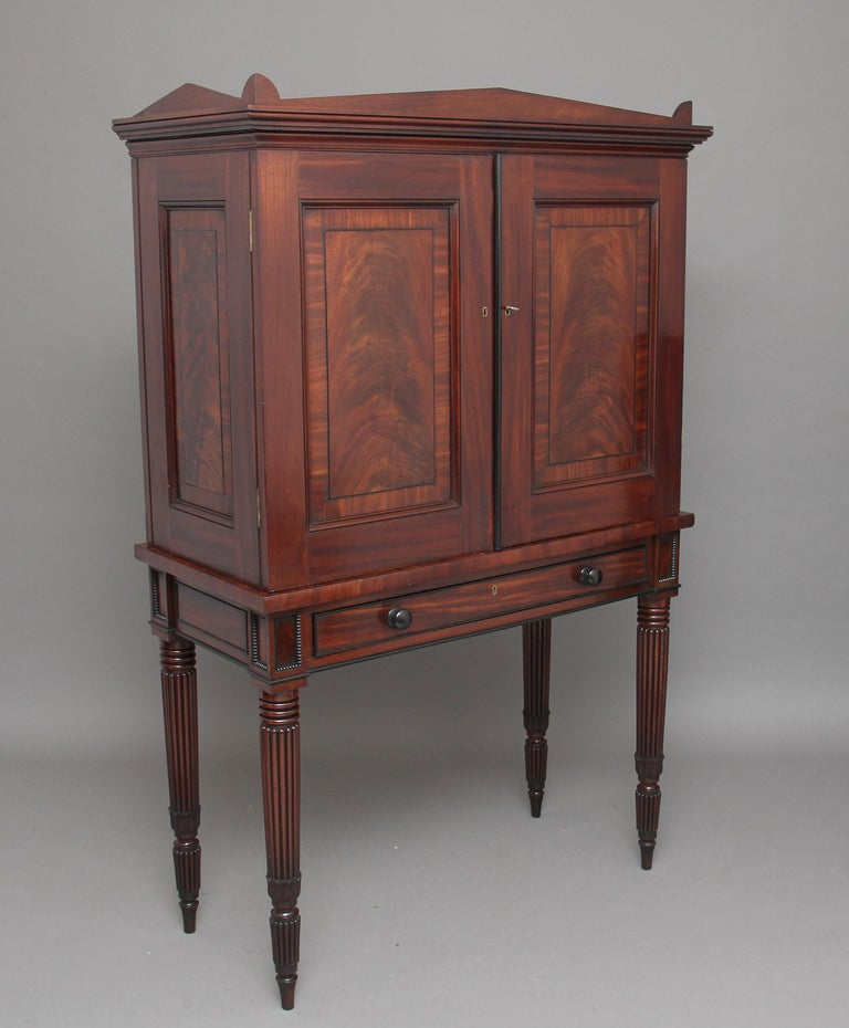 Mid-19th Century Early 19th Century Mahogany Collectors Cabinet For Sale