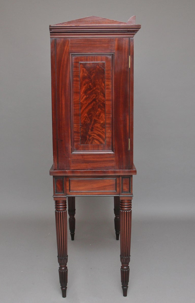 Early 19th Century Mahogany Collectors Cabinet For Sale 1