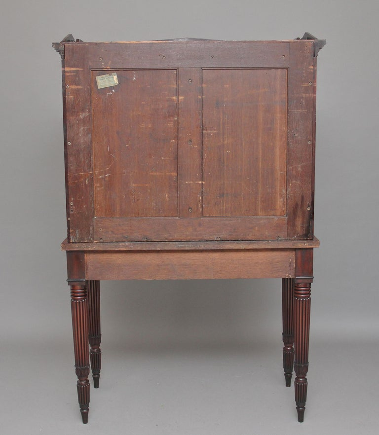 Early 19th Century Mahogany Collectors Cabinet For Sale 2