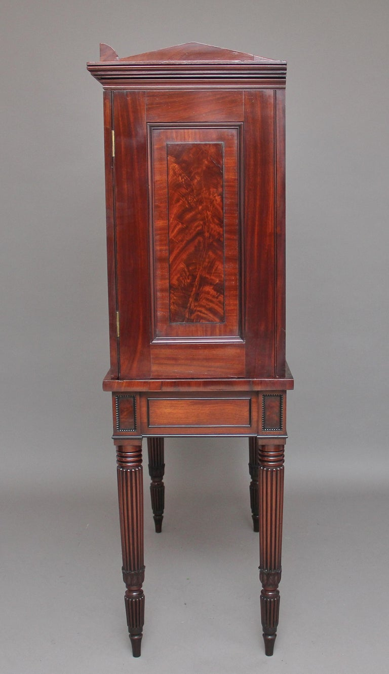 Early 19th Century Mahogany Collectors Cabinet For Sale 3