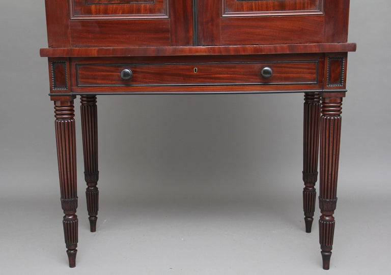 Early 19th Century Mahogany Collectors Cabinet For Sale 4