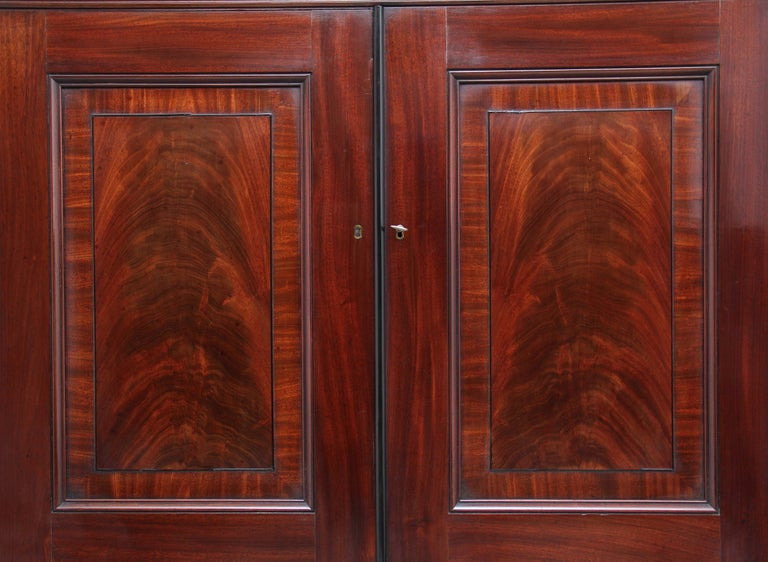 Early 19th Century Mahogany Collectors Cabinet For Sale 9